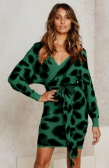 Green Long Batwing Sleeves Mini Bodycon Dress
